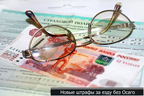 Штраф за страховку в Беларуси, размер штрафа за езду без страховки
